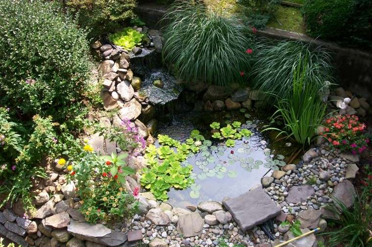 bonito estanque flores agua cataratas