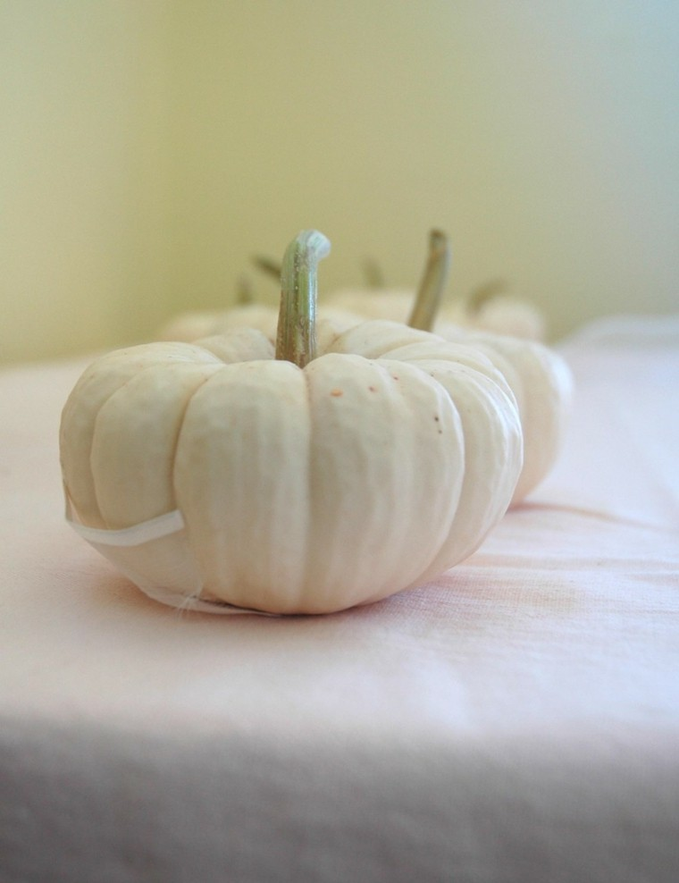 calabaza blanca sobre mesa mantel