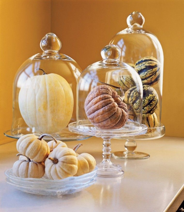calabaza diferentes decorar mesa