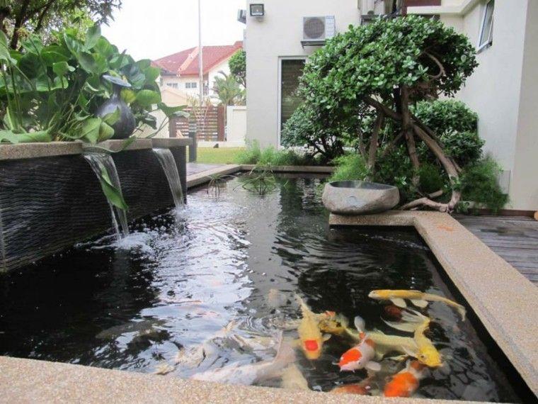 cascadas fuiente peces koi