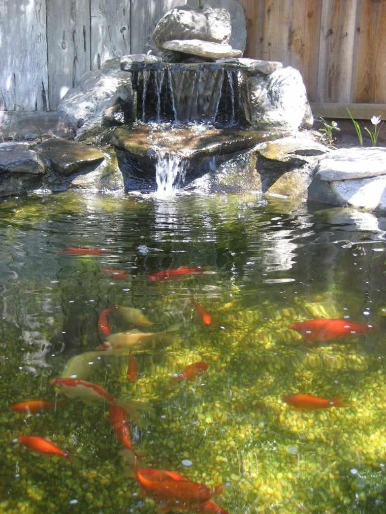 cascadas jardin estanque peces naranja
