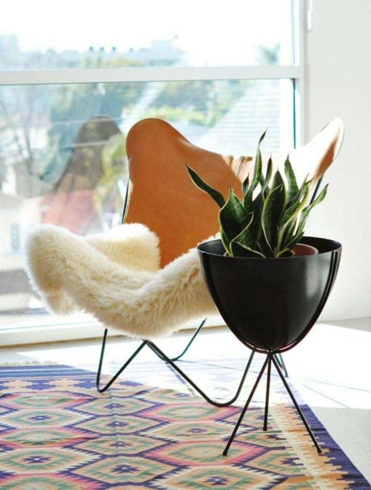combinada alfombra planta serpiente colorido