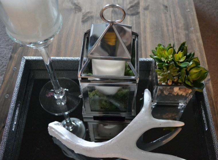 cuerno suculentas variante copa blanco
