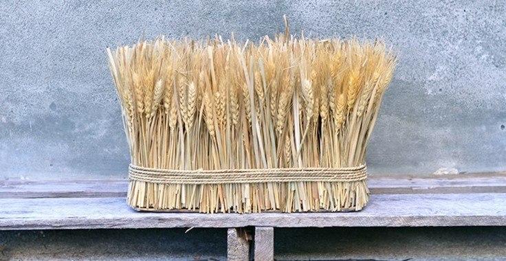 decoración natural matojo cereales