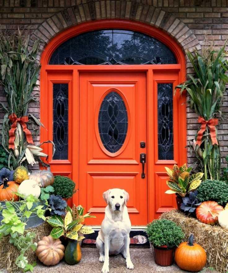 decoración puerta entrada jardin perro