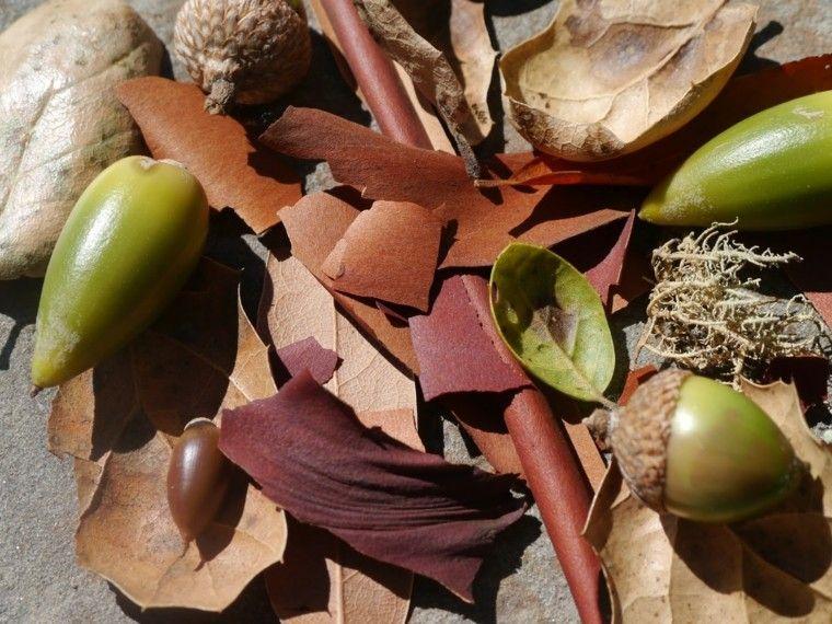 decoracion natural estacion de otoño