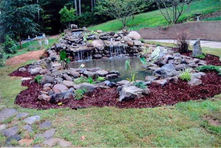 estanque cascadas piedras rocas plantas