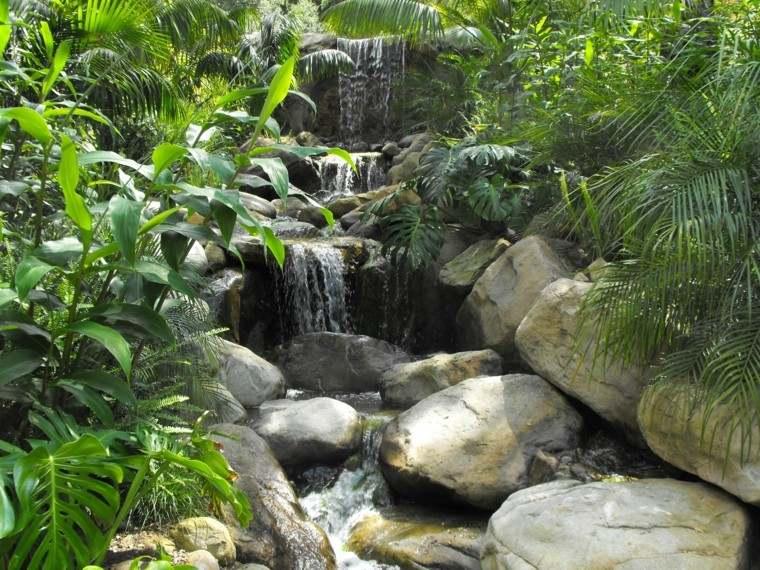 estupenda fuente jungla agua cascada