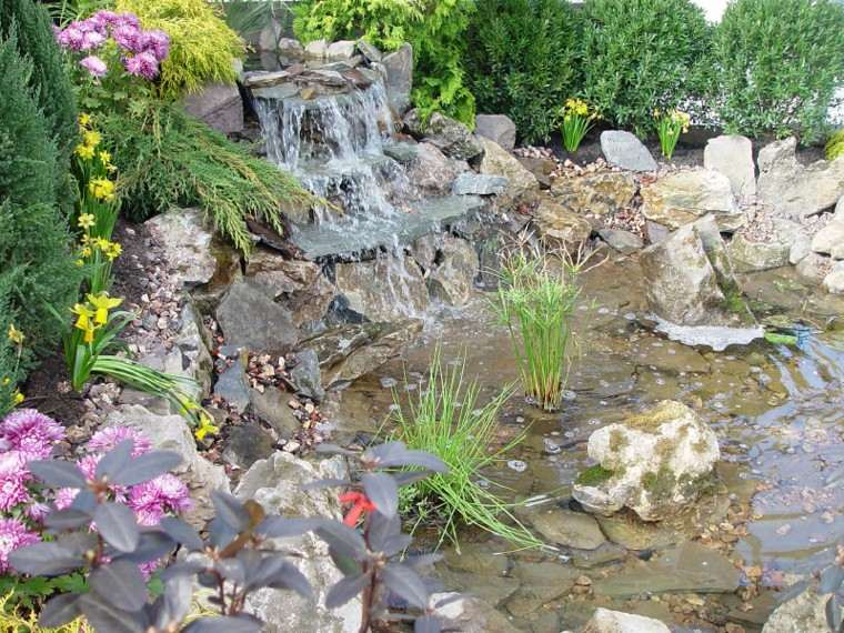 fuentes cascada muchas flores monedas