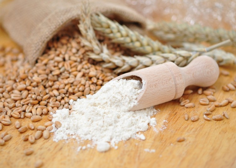 harina receta de salsa lasaña