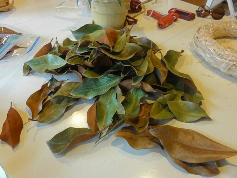 hojas magnolia mesa blanca rosco