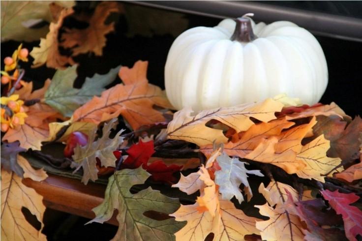 deco hojas secas calabaza blanca