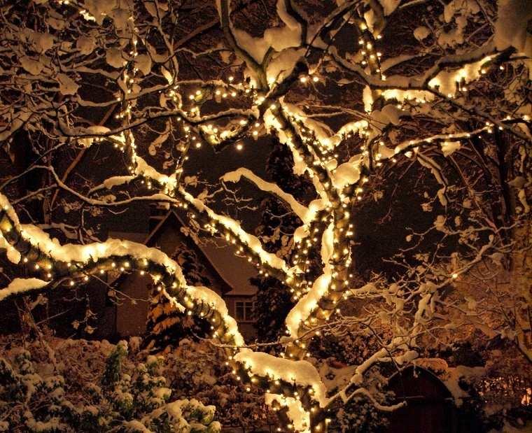 iluminacion exterior decoracion navide a con luces. Black Bedroom Furniture Sets. Home Design Ideas