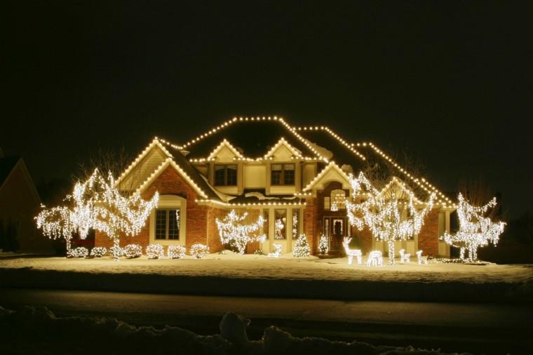 iluminacion exterior decoracion navidena luces arboles entrada ideas