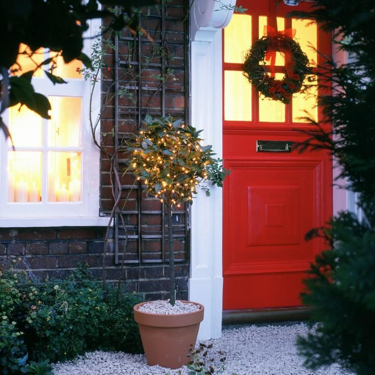 iluminacion exterior decoracion navideña luces maceta ideas