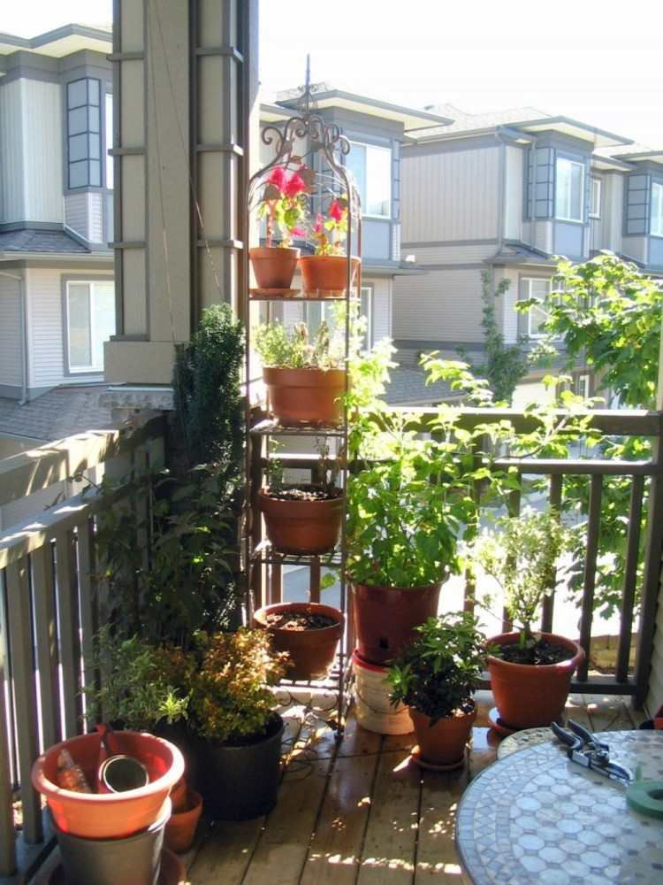 macetas paredes mesa jardineria plantas
