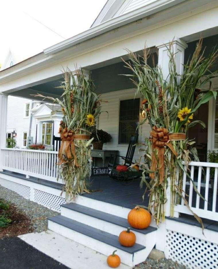maiz plantas creativo escaleras calabazas