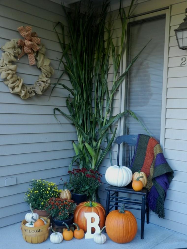 maiz plantas creativo grises diy