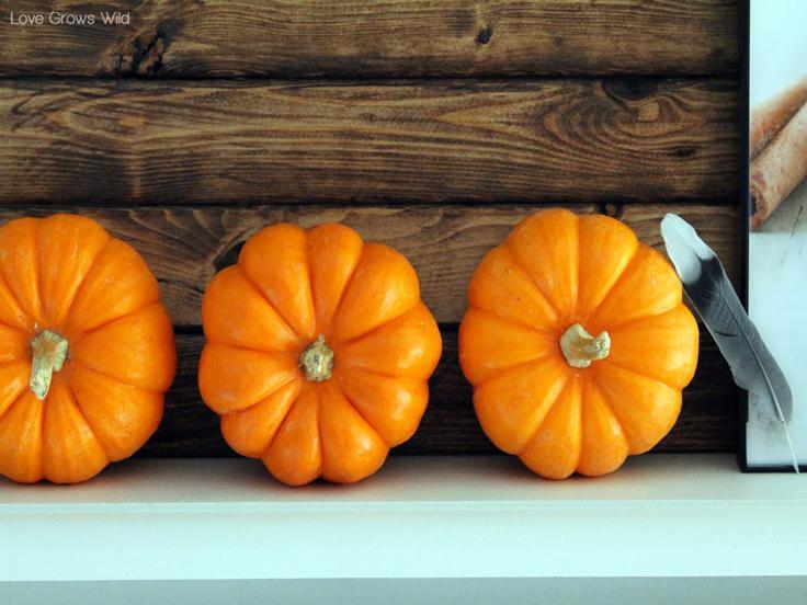 mini calabazas decorativas otoño
