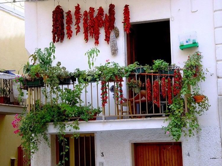 balcon diseño pequeño semillas colorido