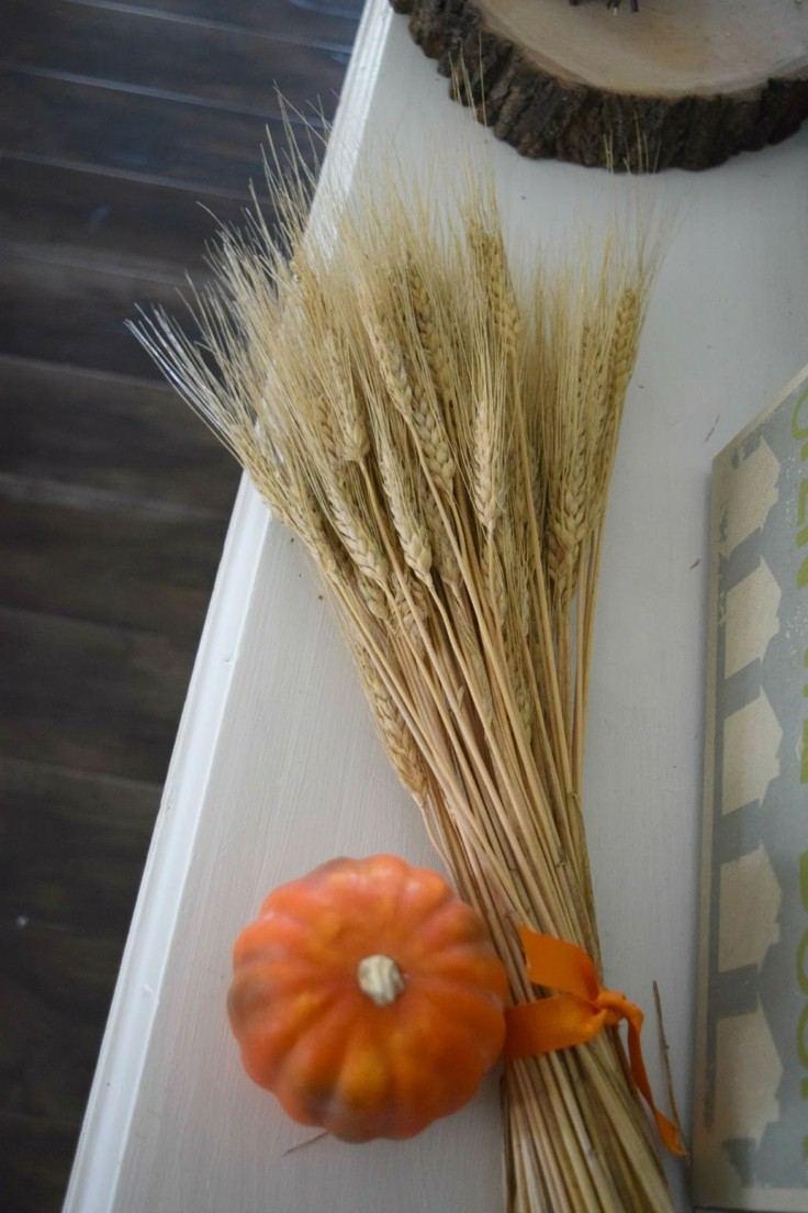 ramo trigo calabaza color naranja