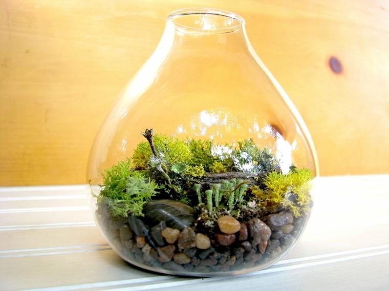regalos de navidad amantes plantas teraneum ideas