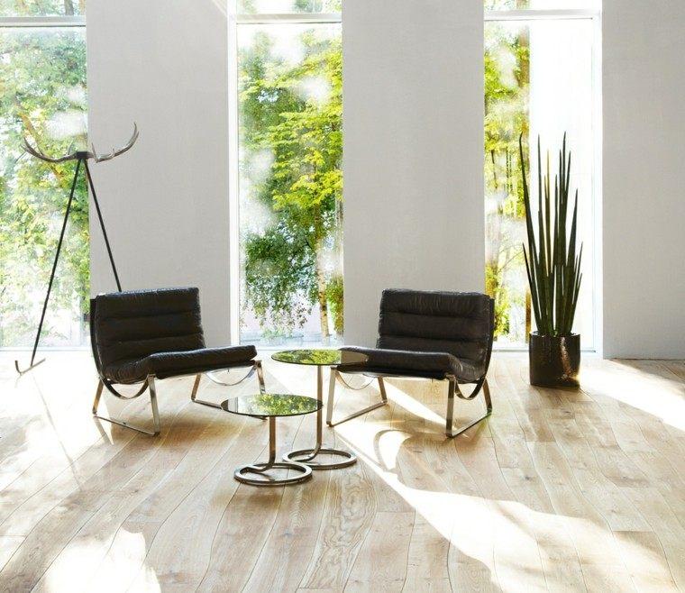 suelos de madera interiores forja luminoso plantas