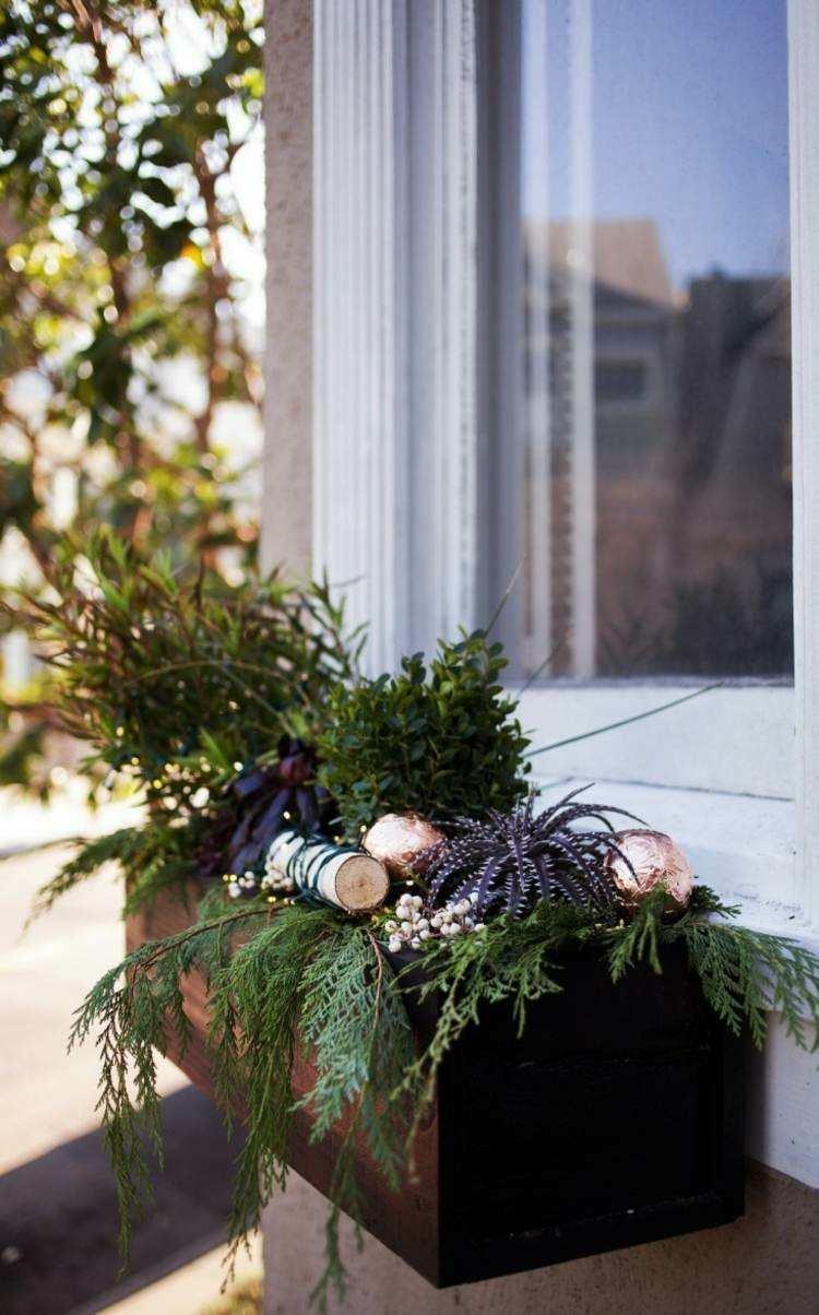 adornos navideños ventanas caja plantas jardines