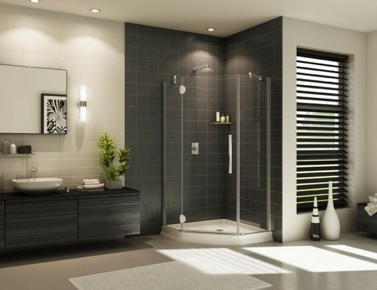 baños modernos con ducha jarrones plantas