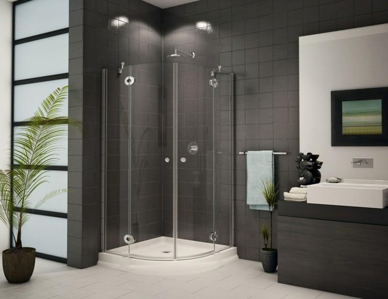 baños modernos con ducha macetas plantas