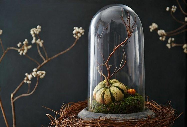 calabaza de halloween ideas ramas flores