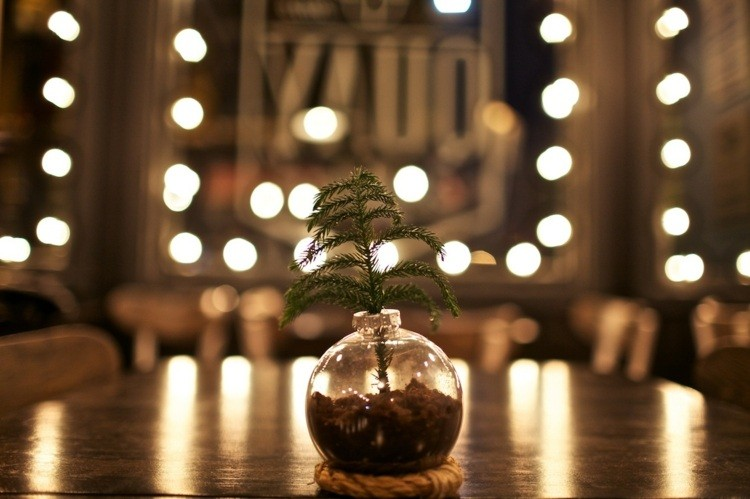 cena de navidad ideas bombillas plantas