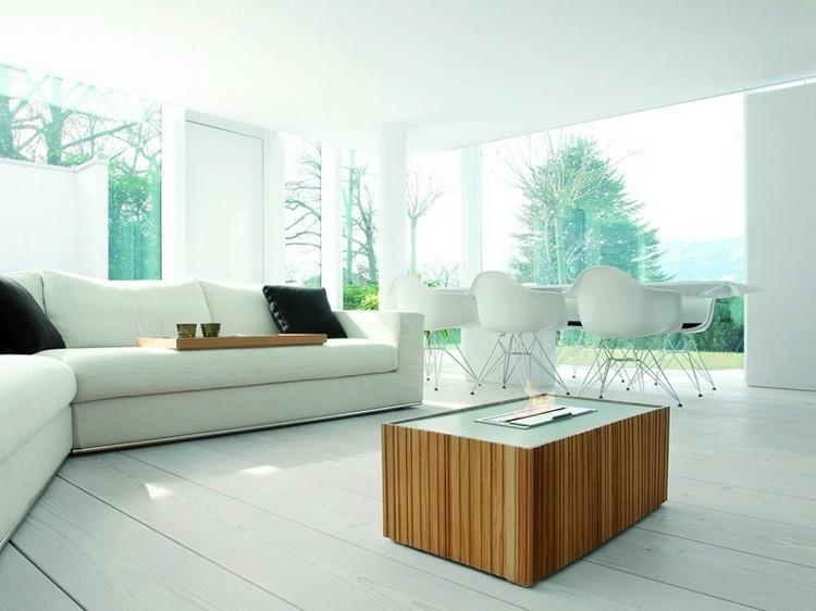 chimeneas modernas ideas sofas madera