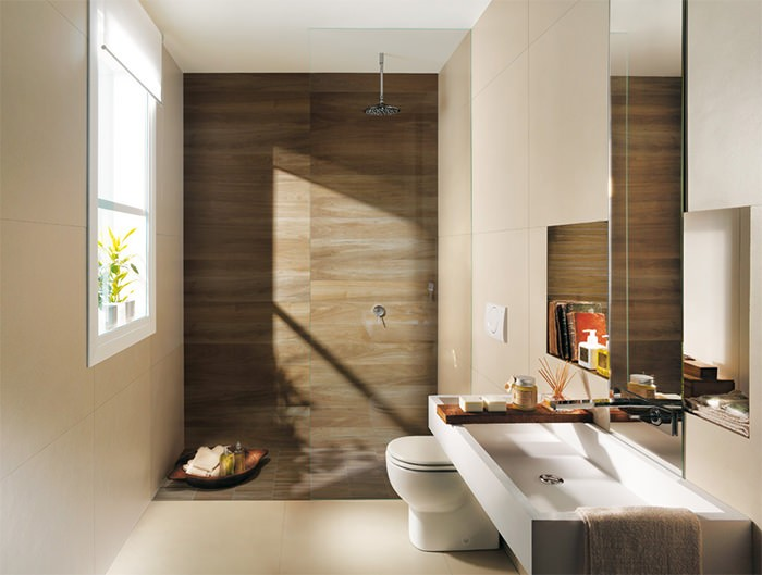 Cuartos De Baño En Beige:losas de color marrón y beige para el cuarto de baño