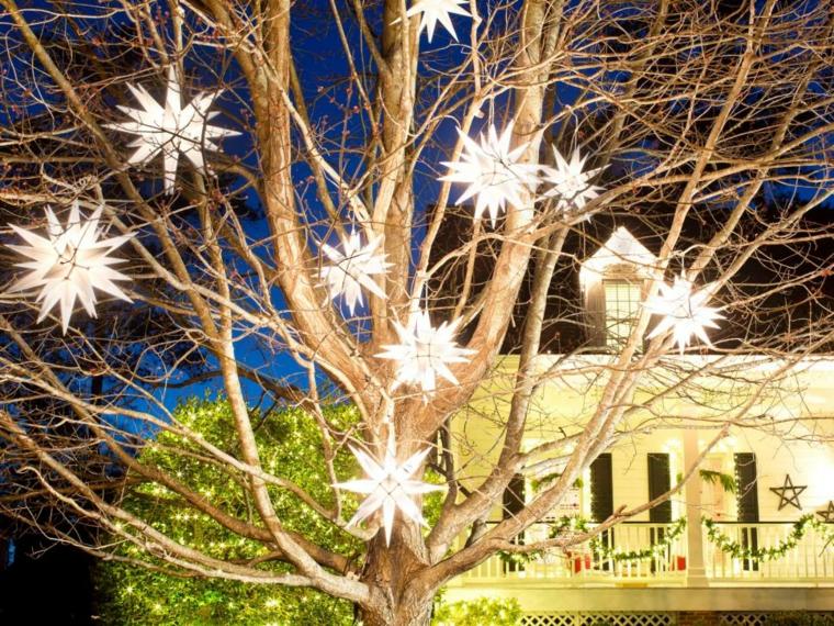 estrellas diy plantas ramas luces