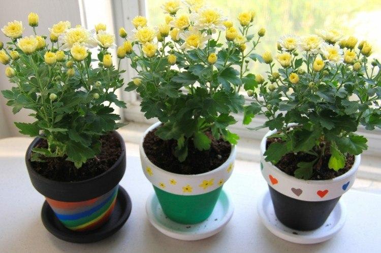 flores amarillo decoracion oscuro ventanas