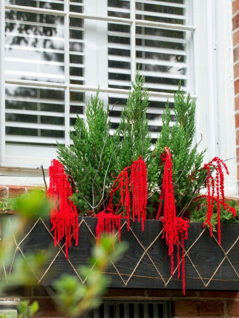 navideñas decoracion plantas ventanas