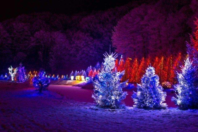 luces de navidad ideas jardines arboles nieve