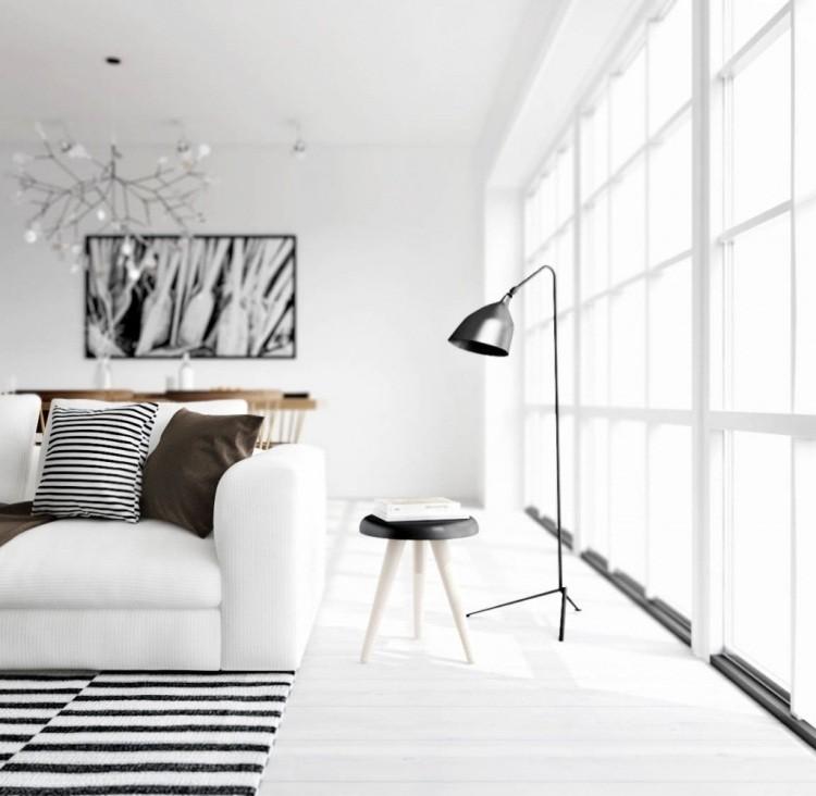 Muebles de sal n blanco y negro 50 ideas atrevidas - Cojines de salon ...