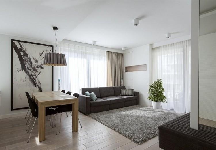 sofás energía oscura salon moderno alfombra gris ideas