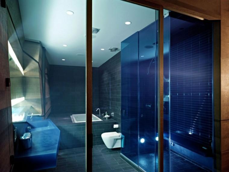 Azulejos Baño Azules:baño con azulejos grises y mamparas azules