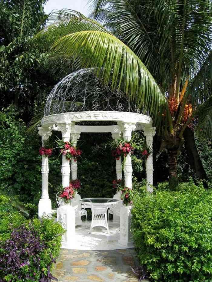 bella blanca ovalada palmera jardin ideas