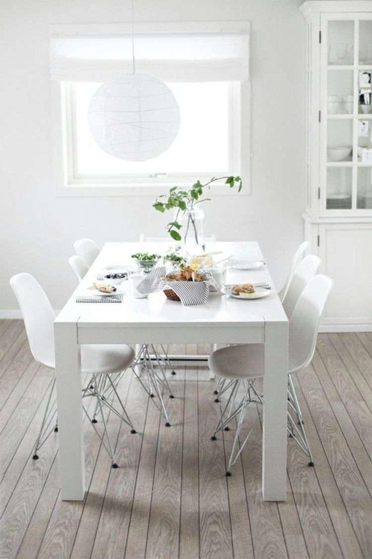 espacio en blanco alfombras metales plantas