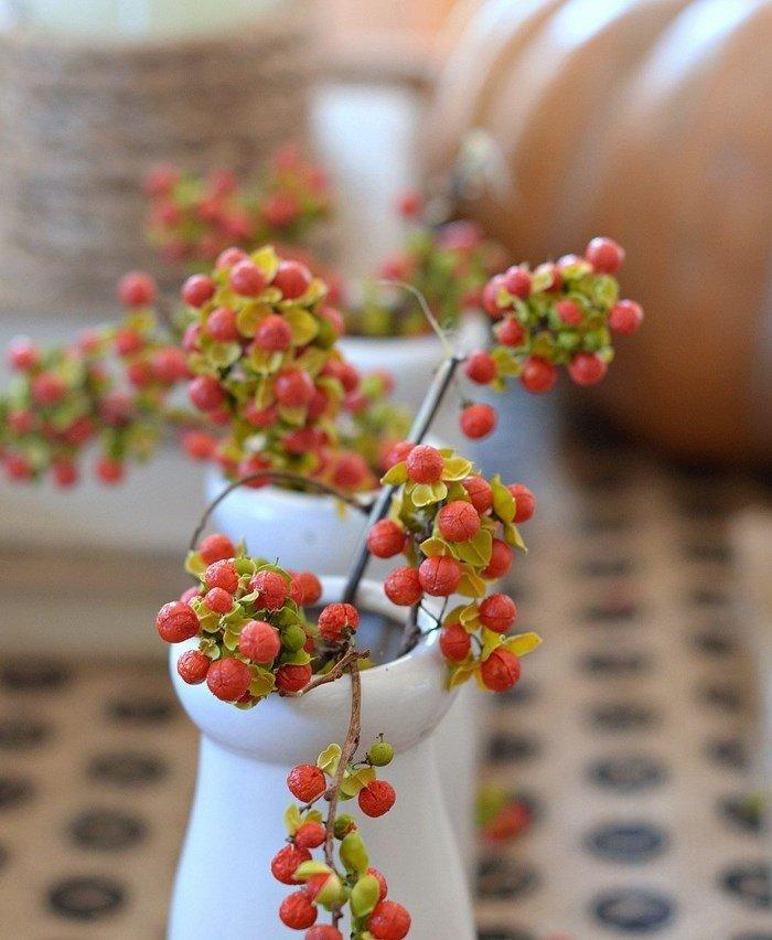 opciones plantas jarron porcelana blanca ideas