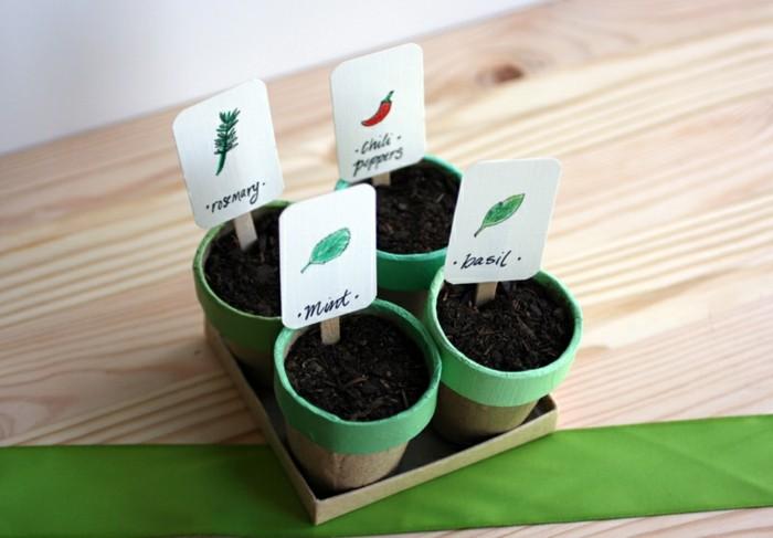 jardin yerbas pequeno regalo precioso ideas