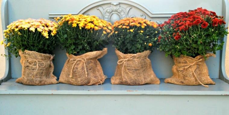 macetas bolsas flores amarillas aire libre ideas