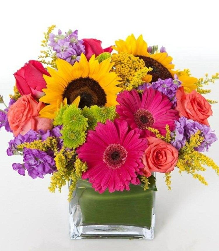 minimalista estilos flores casa colorido girasol