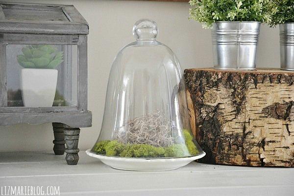 original diseño campana vidrio deco