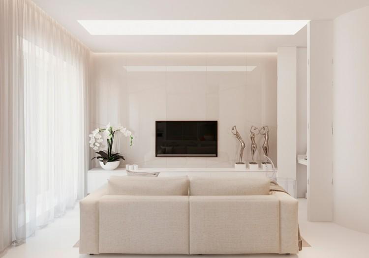 plantas paredes diseños estantes bailarinas televisor