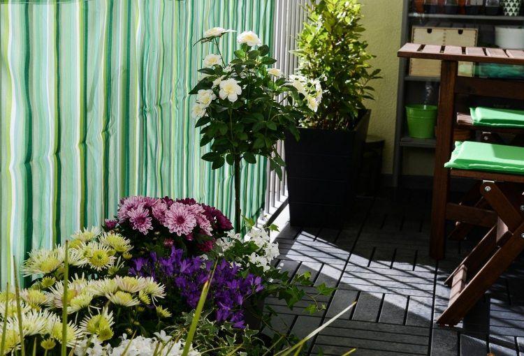 suelos madera exterior plantas flores ideas